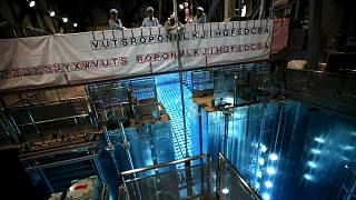 Japonya nükleer reaktörlerin yüzde 40'ını kapatmayı hedefliyor