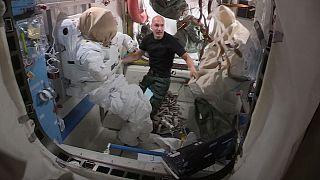 گزارشهای یورونیوز از فضا؛آزمایش سلولهای بنیادی در فضا