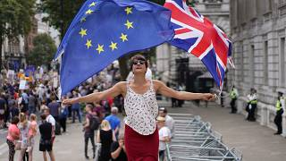 FILE PHOTO Anti-Brexit protestors demonstrate at Whitehall in London, Britain, August 31, 2019.