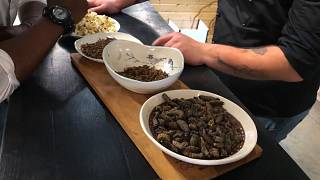 South Africans get the bug: Cape Town eatery serves insect-only meals