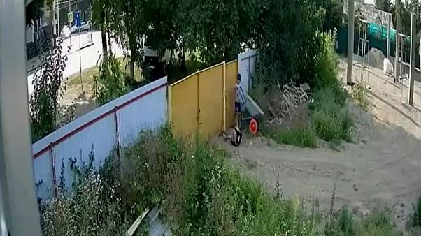 ویدئوی مصائب سرقت یک فرغون، دو کودک روس را معروف کرد