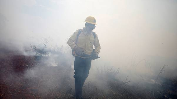 Amazonas: a hadsereg is részt vesz az oltásban