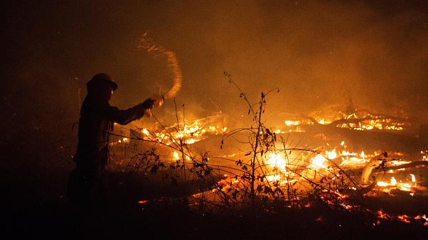 French firefighters mobilised to fight fires in Amazon rainforest