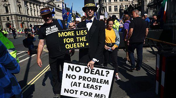 Alsóházi vezetőnek öltözött brexit-ellenes tüntető Londonban