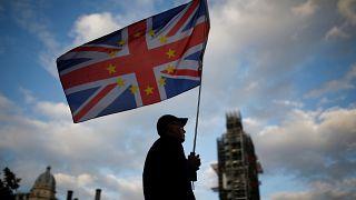 Brexit karşıtı bir gösterici İngiliz Parlementosu önünde