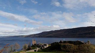Le monstre écossais du Loch Ness serait une anguille géante, piste génétique