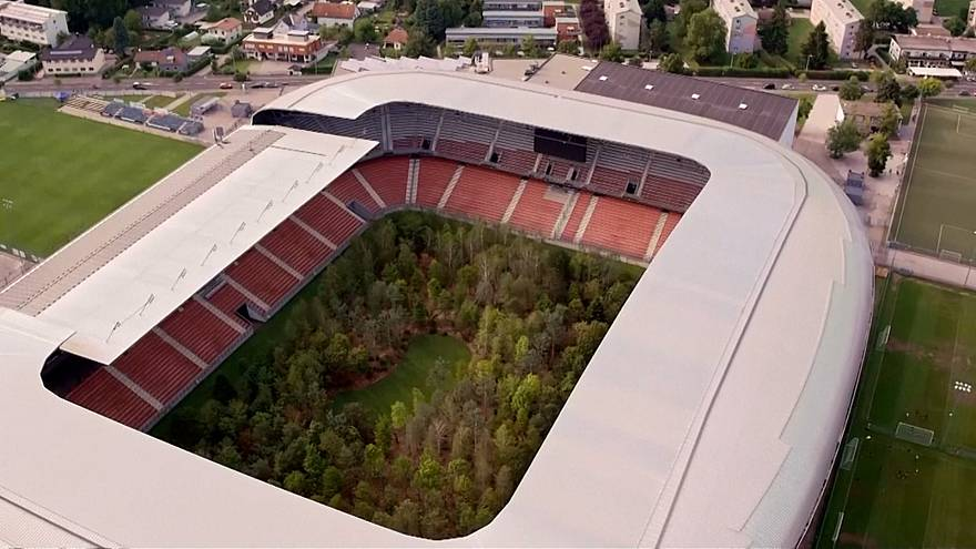 Art installation transforms Austrian soccer stadium into forest of 300 trees