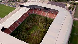Watch: Art installation transforms Austrian football stadium into forest