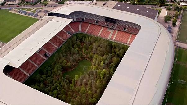 Watch: Art installation transforms Austrian football stadium into forest