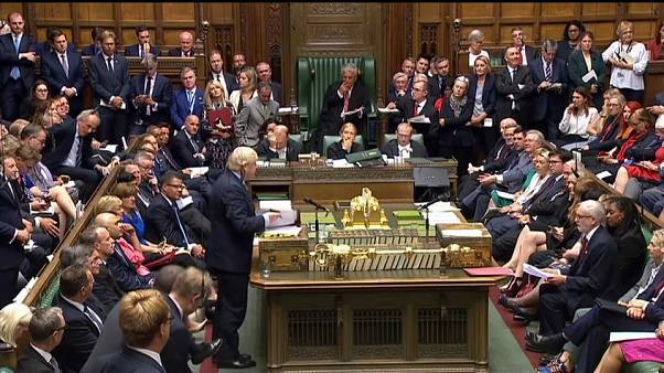 Британцы защищают парламент