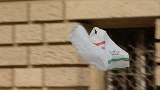 Umweltministerin Schulze: Plastiktüte kann einpacken