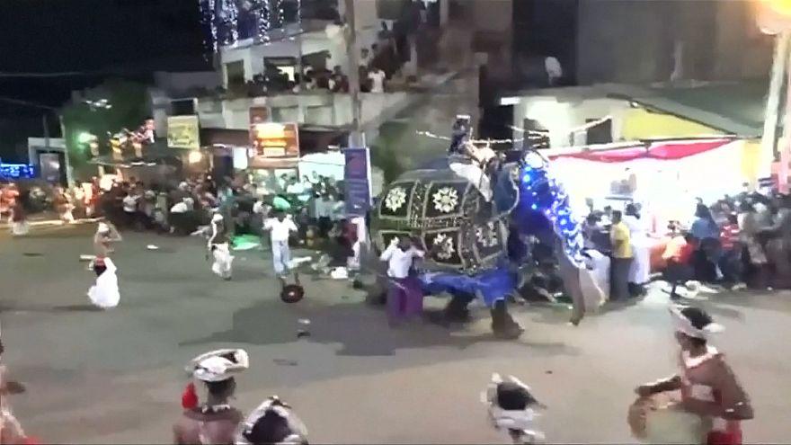 دو فیل در جشنواره سالانه رژه فیلها در سریلانکا ۱۷ نفر را مجروح کردند