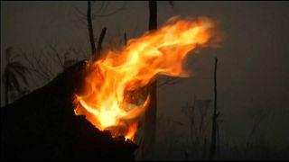 Incendios y crecimiento económico en Bolivia