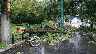 Életveszélyesen megsérült egy ember a szegedi viharban