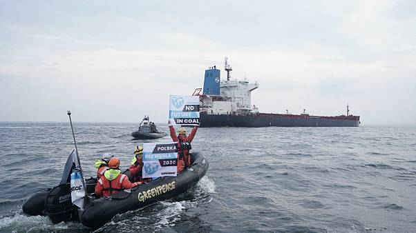 Watch: Polish officers smash windows of Greenpeace ship with
