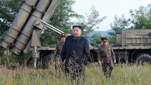 کره شمالی: یک سامانه بزرگ موشکانداز چند راکتی را آزمایش کردیم