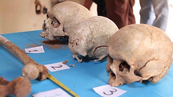 Cráneos y huesos encontrados en la casa que fue propiedad de Stroessner