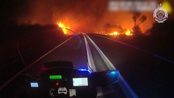 Mitten im Buschfeuer- dramatische Bilder