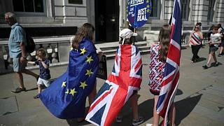 "مواطنون بريطانيون ضد ""بريكست"""