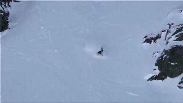 شاهد: متزلجة أمريكية تنجو من سقوط مروع في دورة الألعاب الشتوية