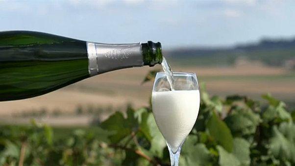 """شاهد: """"بريكست"""".. وصناعة الشمبانيا الفرنسية"""