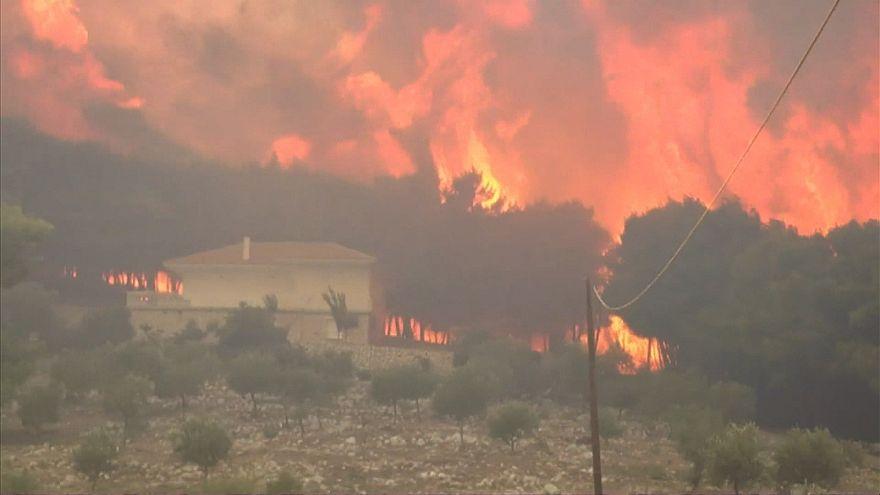 Incêndio florestal destrói habitação em ilha grega