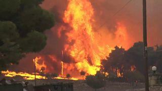 Waldbrand auf Zakynthos