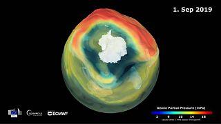 Representación del agujero de la capa de ozono el 1 de septiembre de 2019.
