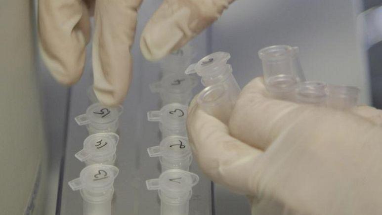 В новосибирской лаборатории с опасными вирусами произошел взрыв