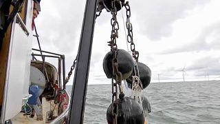 Geisternetze: Gefährlicher Müll auf dem Meeresgrund