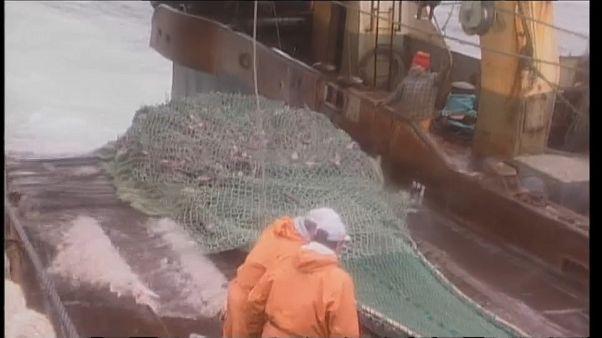 """Redes fantasma"" contaminam mares"