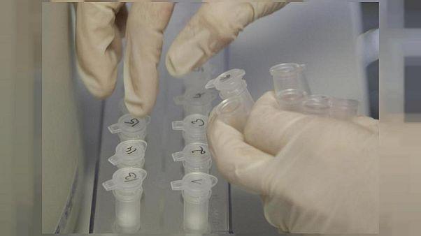 Una explosión destruye un laboratorio de virus letales en Rusia