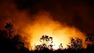 Endonezya ve Malezya orman yangınları sebebi ile duman altı: Havaalanları ve okullar kapatıldı