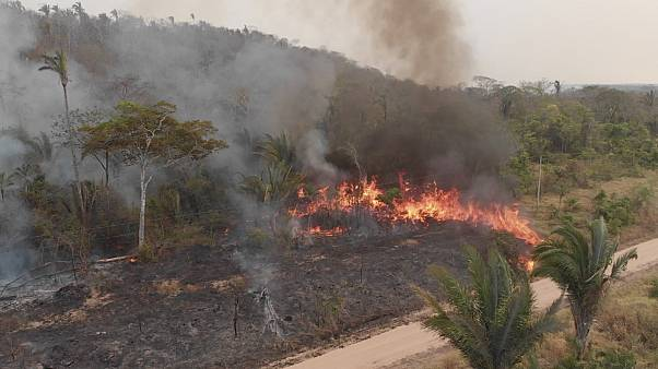As 12 million hectares burn in the Amazon, Bolivia receives EU support to tackle wildfires