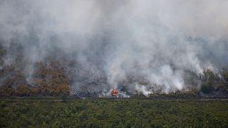 حرائق الغابات في بالانغكا رايا، مقاطعة كاليمانتان الوسطى، إندونيسيا، 14 سبتمبر 2019