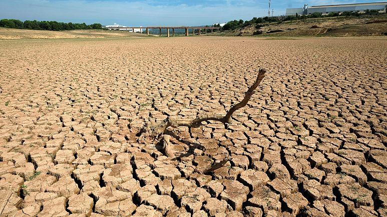 Changement climatique toutes les informations