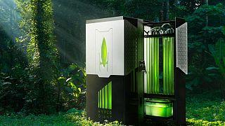 Algával dolgozó bioreaktort készített egy amerikai cég