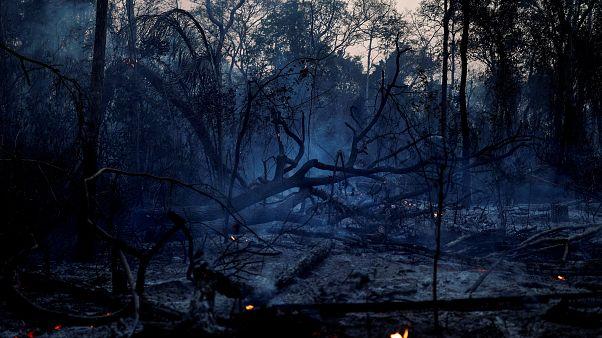Más de cuatro millones de hectáreas quemadas en Bolivia