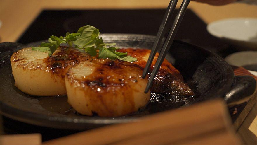 Ιαπωνία: Το μαγιάτικο, ο «αυτοκράτορας» των ιαπωνικών ψαριών