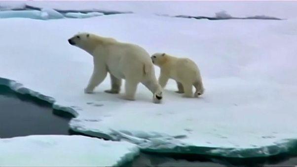 La temperatura global podría sufrir un gran aumento en el próximo lustro