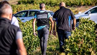 Busts at French vineyards uncover over 165 suspected slaves from Bulgaria