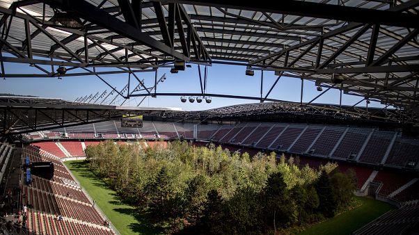 Foci-Eb: több mint félmillió fát ültet az UEFA