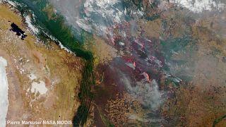 Continua a bruciare il cuore dell'America del Sud - e non solo in Amazzonia