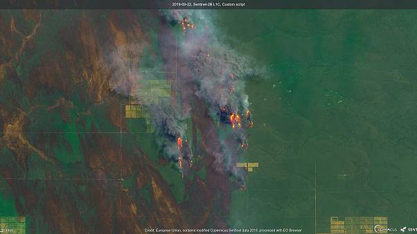 Uno de los incendios que afecta a la región