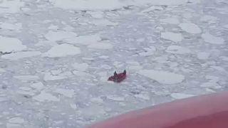 Kutatókat mentettek a jeges vízből