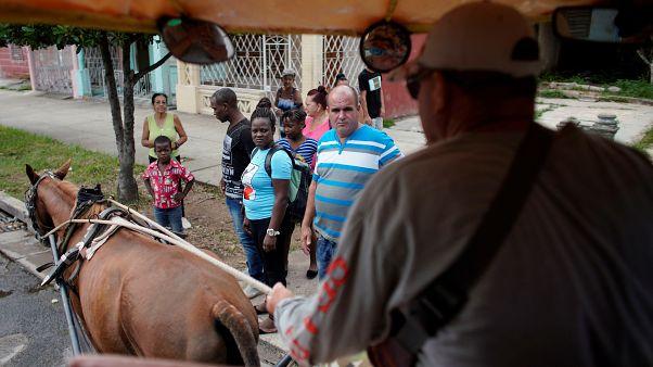 Кубинцы запрягают лошадей