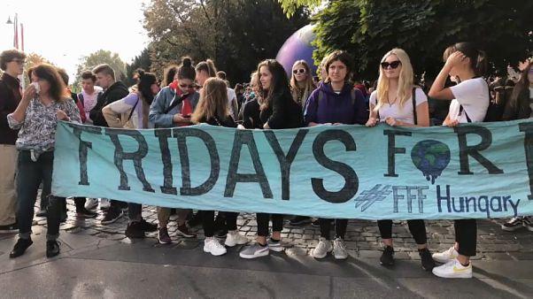 Allarme clima : il venerdì che vuol cambiare il mondo