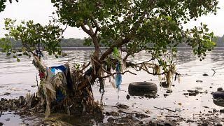 آلودگی ناشی از زبالههای پلاستیکی؛ چه کشورهایی بیشترین سوءمدیریت را دارند؟