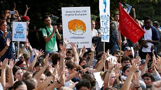 Climate activists call for change in wave of global demonstrations