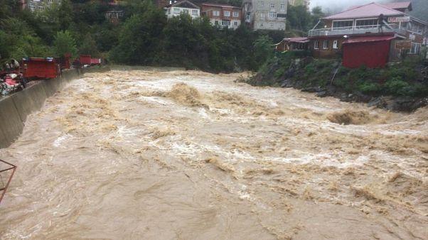Artvin'in Borçka ilçesinde meydana gelen yağış nedeniyle dereler taştı